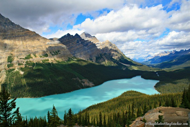 Icefields Parkway Peyto Lake Canada