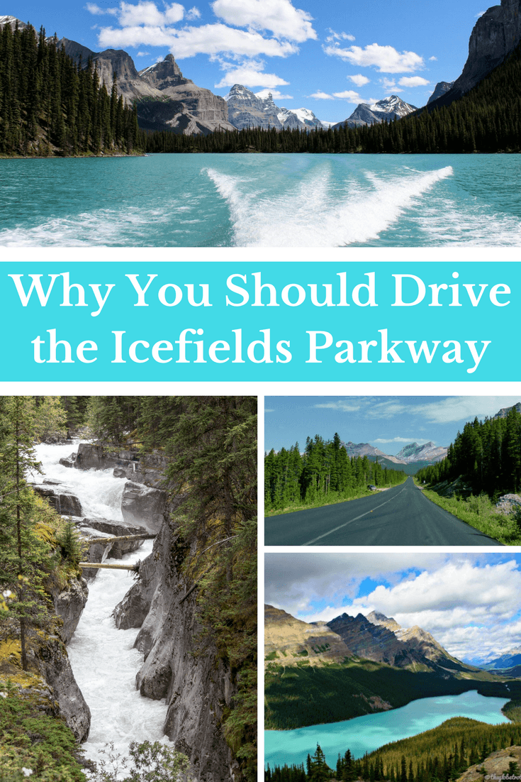 Why You Should Drive the Icefields Parkway