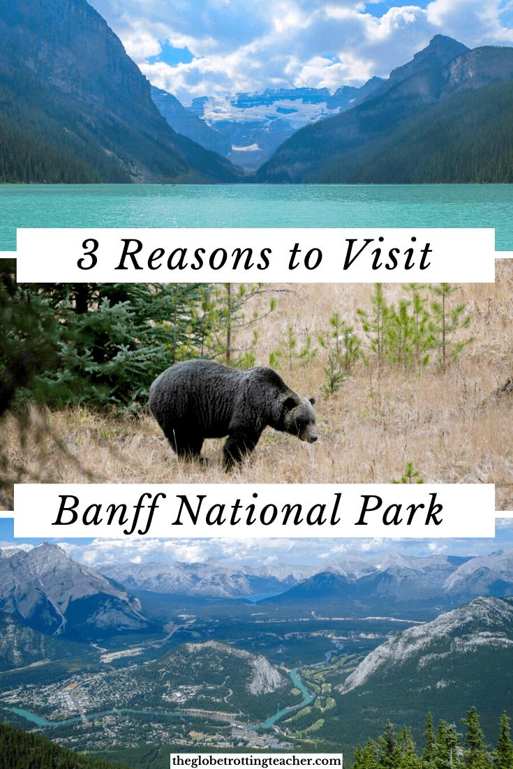 3 Reasons to Visit Banff National Park Immediately
