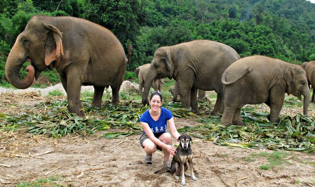 Elephants, dog, and me at ENP