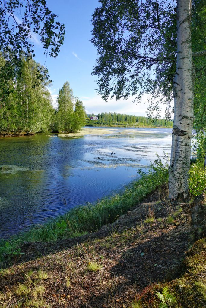 Skelleftea Swedish Lapland River
