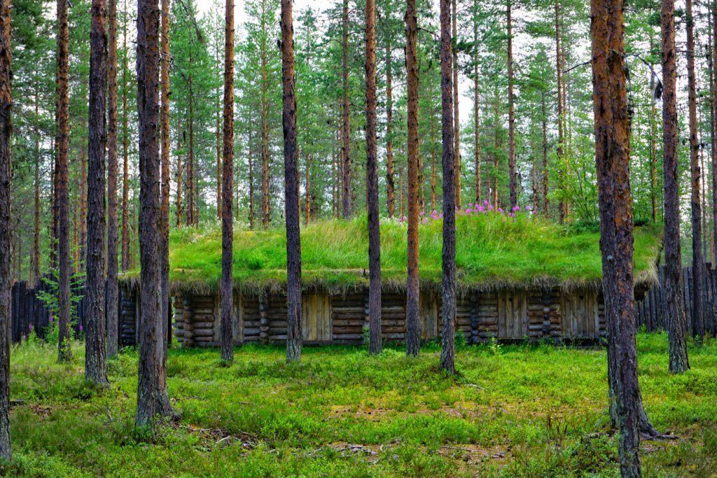 Skelleftea Swedish Lapland Svansele