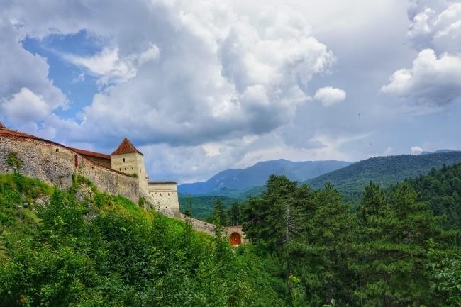 Rasnov Fortress forest