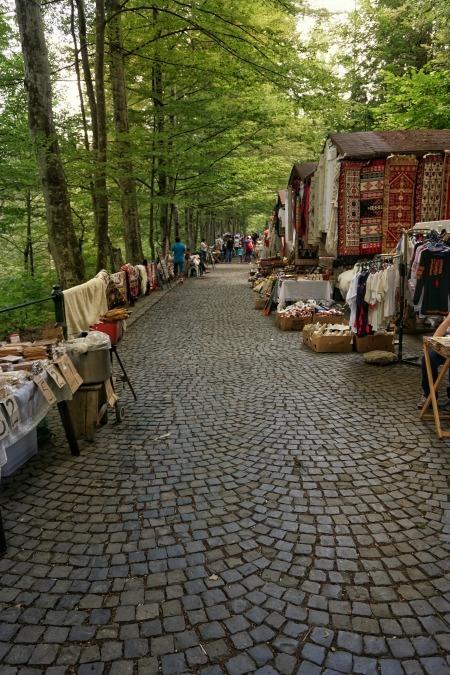 Sinaia Romania Forest Path