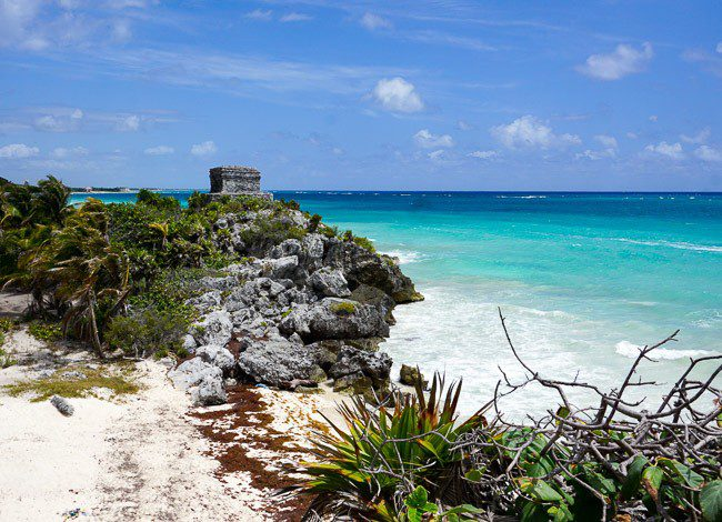 Cenote Playa del Carmen Mexico