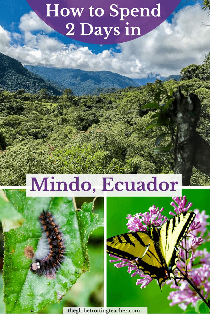 How to Spend 2 Days in Mindo Ecuador