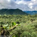 How to Spend 2 Days in the Mindo Cloud Forest