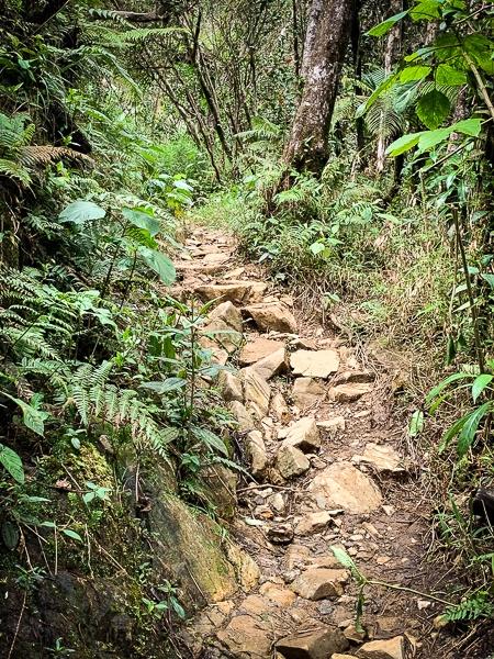 El Yunque tours