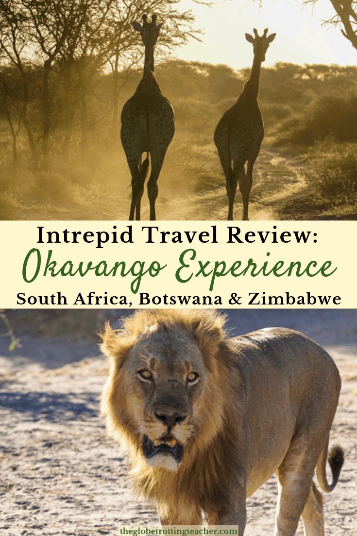 Intrepid Travel Review -Okavango Experience