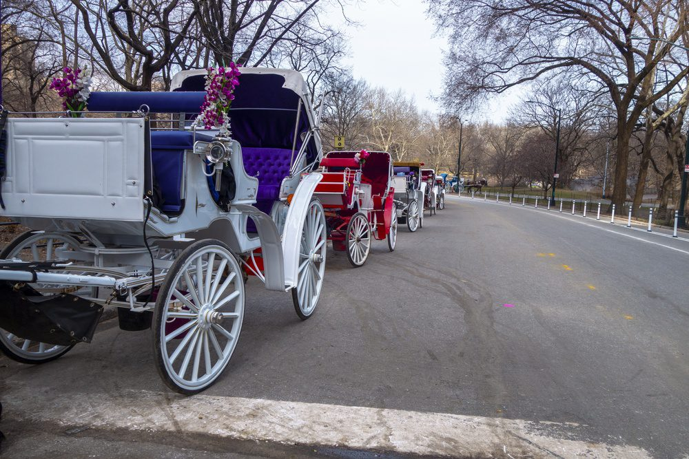 New york city Manhattan central park horse and carriage