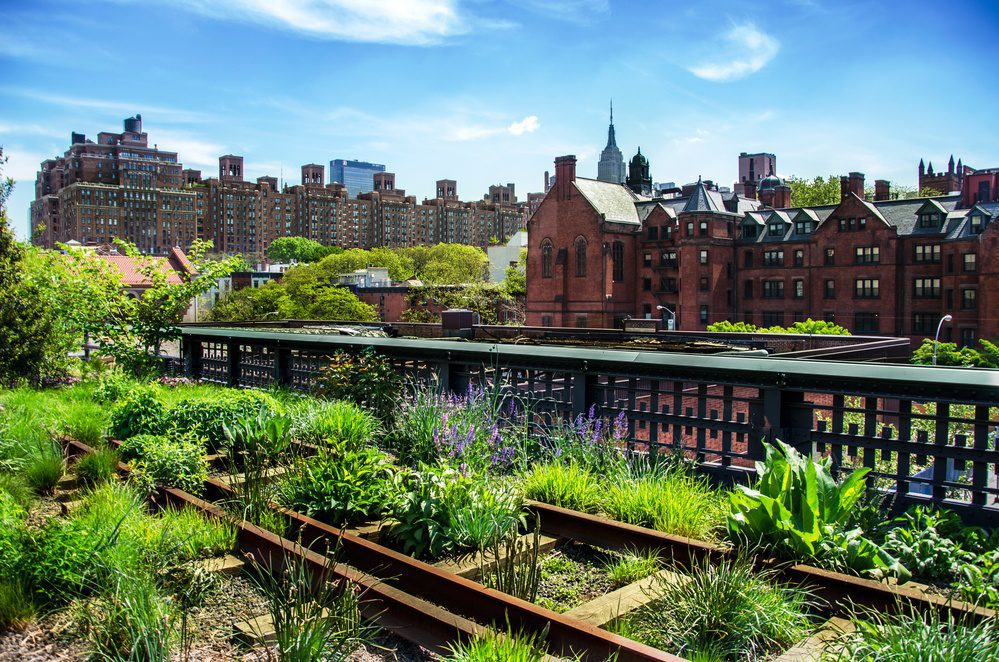 High Line Chelsea NYC
